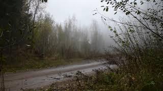 Фото Подрыв авиабомбы весом в тонну в Новгородской области