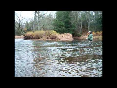 The magic of the River Philip