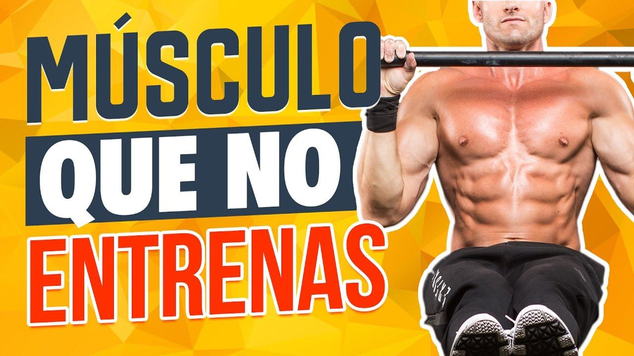 Músculo más importante ¿Cuál es el músculo más poderoso? - YouTube