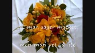 Björn Afzelius: Tusen Bitar -  Text & Musik: Anne Linnet