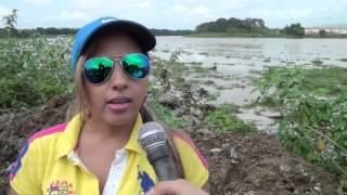 PERSONAL MUNICIPAL DEL CANTÓN DAULE SEMBRÓ 240 PLANTAS CON EL PROPÓSITO DE FORESTAR LA JURISDICCI