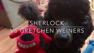 Sherlock vs Gretchen Weiners