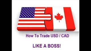 Forex Trading - How to Trade USD / CAD