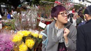 Hong Kong Chinese Lunar New Year Pre-Walk 2017 - Mong Kok Flower Market & Flea Market