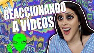promos de canales + reaccionando a sus videos ¡¡ entra !!
