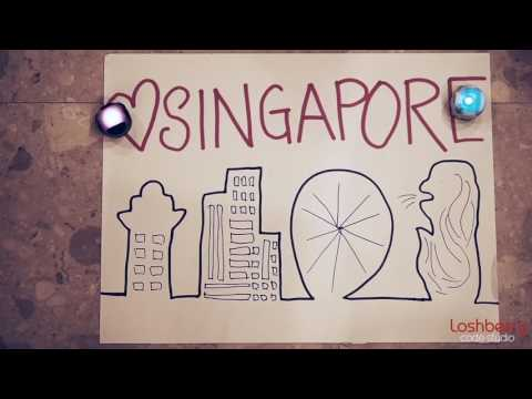 Because It's Singapore! | Loshberry Code Studio Celebrates National Day