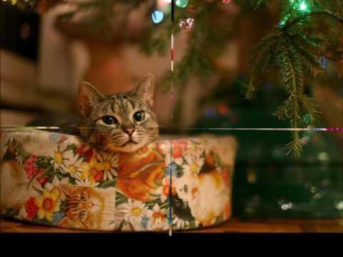 Amy Grant - Rockin' Around The Christmas Tree - Amy Grant - Rockin' Around The Christmas Tree - YouTube