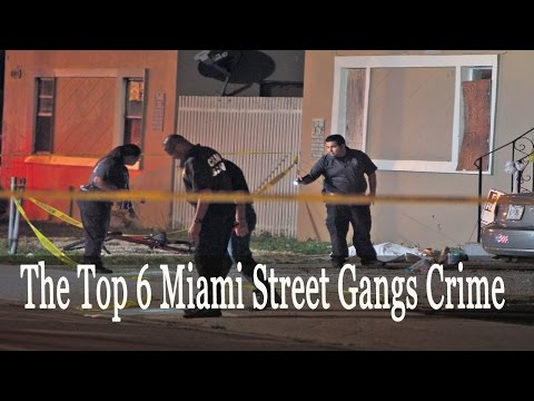 National Documentary  ➤  The Top 6 Miami Street Gangs Crime