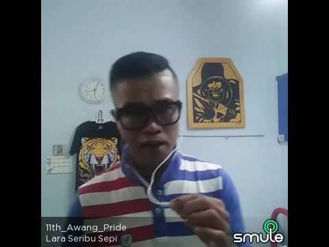 Lara Seribu Sepi cover by Awang_Pride
