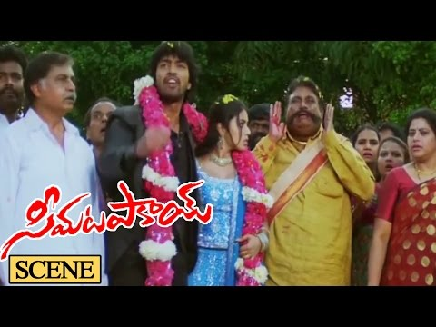 Seema Tapakai Movie Climax Scene || Seema Tapakai Movie || Allari Naresh, Poorna