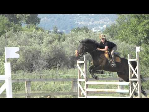 Equitation : la pédagogie sensitive s'adapte à tous les publics