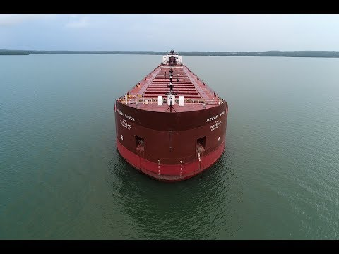 Shipping On The Great Lakes...  A Bird