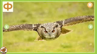 БУКВЫ ДЛЯ МАЛЫШЕЙ Звуки букв Учим алфавит с животными Развивающее видео