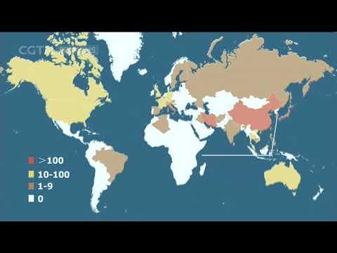 Bilan de l'épidémie du nouveau coronavirus