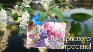 Vida Marčiulionytė-Malyginienė\Lithuania   Pavasaris   ВЕСНА   Spring_2017.03.08