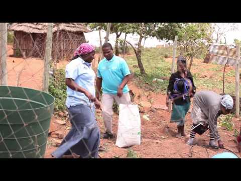 Swaziland: Responding to the drought