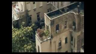 The Speedhunter (Psytrance Music Video set) - Karrier