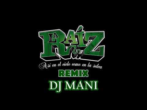 LA RAIZ - ELEGIRÉ - DJ MANI REMIX