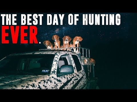 THE BEST DAY OF BEAR HUNTING EVER.