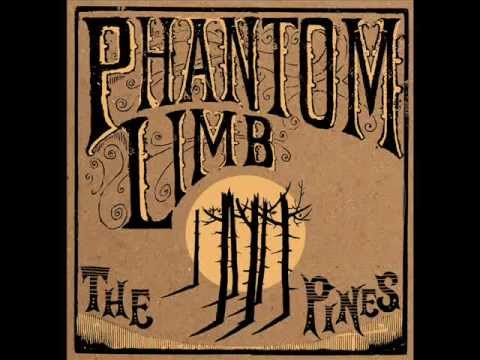 Phantom Limb - Laugh Like You're Mad mp3