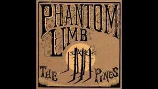 Phantom Limb - Laugh Like You