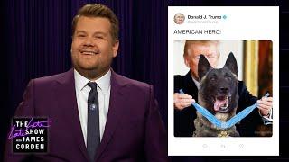 Trump Jumps Head First Into Dog Twitter