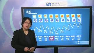 Central Briefing (5:00 pm 31 Jan) - Lee Shuk Ming, Senior Scientific Officer thumbnail