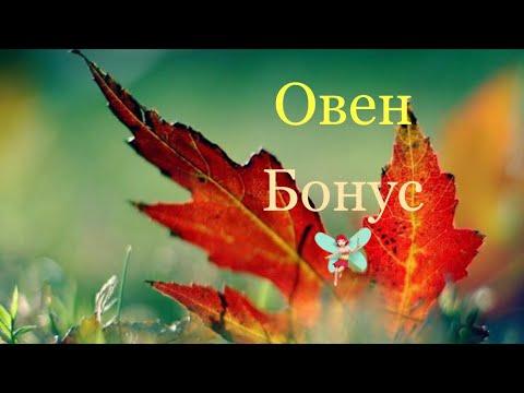 Овен/Бонус/Сентябрь/Таро-прогноз
