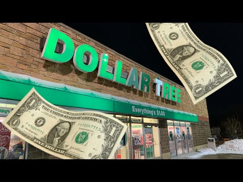 DOLLAR TREE SHOPPING!!!????NEW FINDS!!! ????COME WITH ME!!!????????