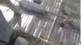 Просел фундамент, лопнула стена.(, 2016-04-20T04:43:22.000Z)