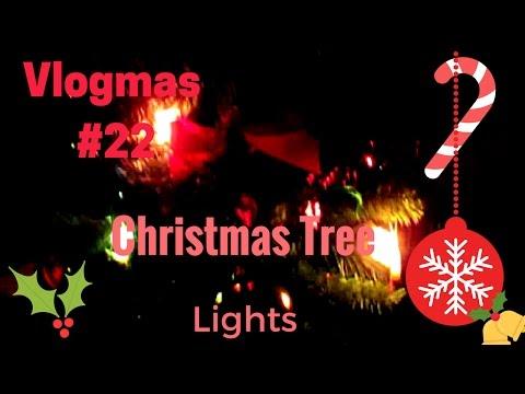 Vlogmas 2016 #22: Christmas tree lights finally | Vegan Gluten Free Ravioli | @Sapori  #75