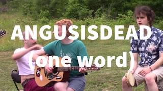 ANGUSISDEAD (one word) - Punk Picnic 4