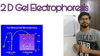 Principle and working of 2D gel electrophoresis