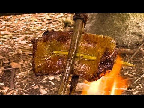 Solo Camp : Primitive Cooking Duck, Bushcraft Challenge