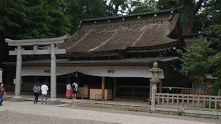 鹿島神宮、大祓 茅の輪くぐり