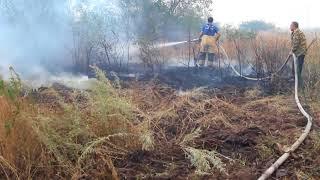Лесной пожар атаковал станицу Верхнекундрюченскую