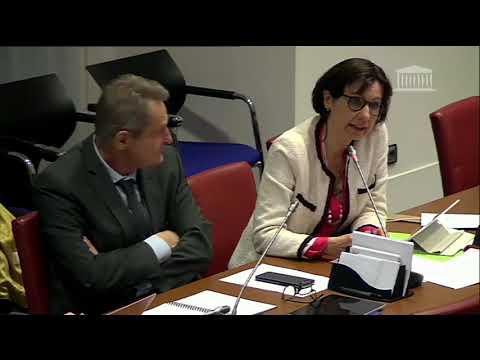 Commission enquête 18 février 2020