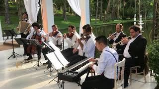 Baixar Always On My Mind - Elvis Presley | Monte Cristo Coral e Orquestra | Músicos Para Casamentos