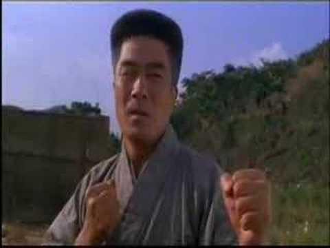 Kung fu vs. Karate
