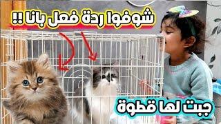 شريت لاختي الصغيرة  قطوة مع هدايا - انصدمت شوفوا ايش صار !!