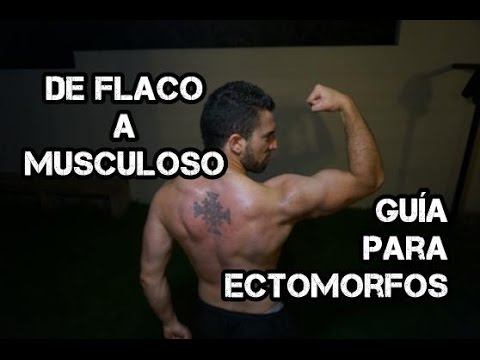 dieta para ectomorfos volumen