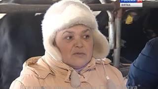 Дороги деревенские. ООО «Пригородное» (05.03.2016)(ГТРК Вятка)