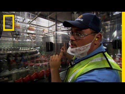 Bottling Bacardi | Ulitmate Factories