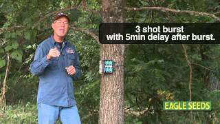 DEER Hunting: Tips For A Great TRAIL CAMERA Survey (#141) @GrowingDeer.tv