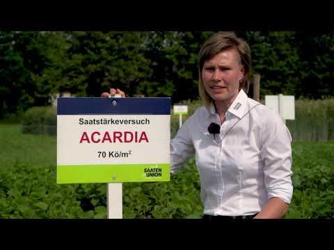 Anbau-Technologien für SOJA, Produktmanagerin Olena Sobko, Standort Moosburg
