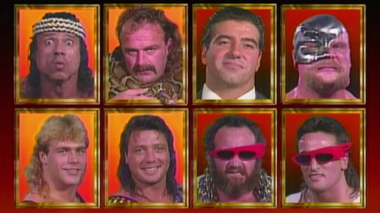 The Visionaries vs The Vipers