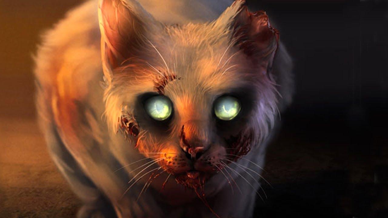 форель картинки монстров кошечек чем показывать мастер-класс
