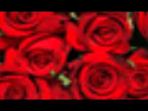 video -mucica cristiana -como una flor nena leal