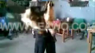 Karle Baby Dance Wance hello song.wmv