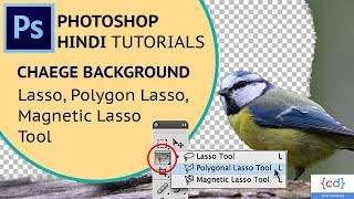 Photoshop Tutorial EP-6 || Image background change in Photoshop (Lasso Tool)